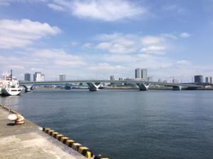 無題晴豊2号橋(仮称)橋脚塩害対策工事その3 01